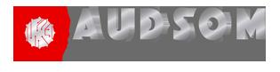 Blog Audsom